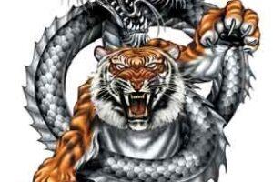 Keseruan Permainan Dragon Tiger Bisa Memberikan Untung Juga